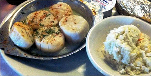 oyster-creek-scallops.jpg